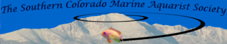 Southern Colorado Marine Aquarist Society